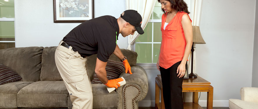 Lake Elsinore, CA carpet upholstery cleaning